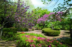四季の咲く城跡公園