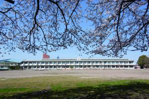 『花いっぱいの結城西小学校』の画像