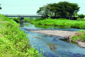 小森の田川