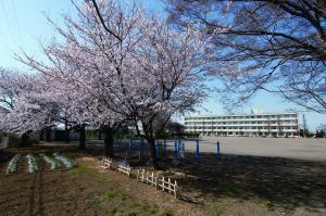 絹川小学校