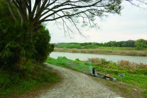 『香取神社と河岸の渡し跡』の画像