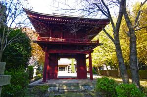 『長徳院』の画像