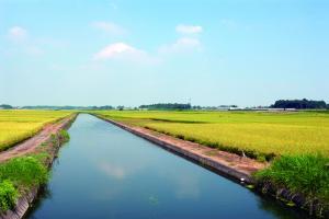 『西仁連川』の画像