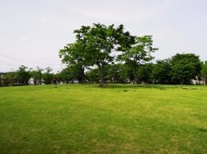 『FC_南部中央公園5』の画像