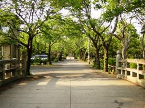 FC_城跡歴史公園3