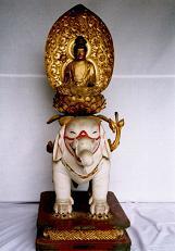木造普賢菩薩像