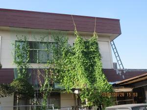 林塗装工業(2)
